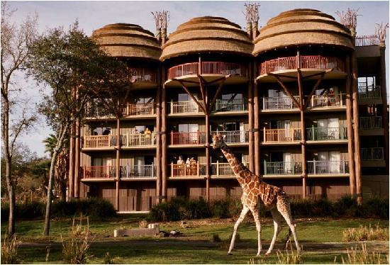 disneys-Animal-Kingdom-Lodge