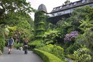 Wellington-Botanic-Gardens