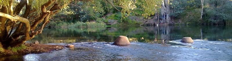 Bluegums-Riverside-Holiday-Park