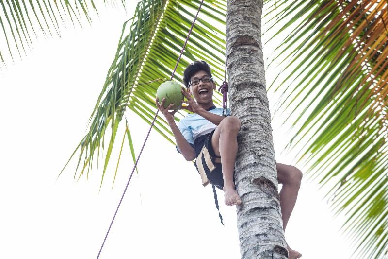 Coconut-tree-climb-2